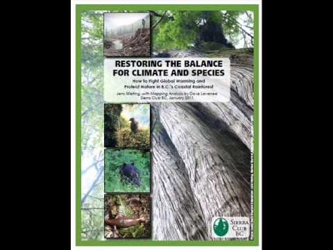 How to Fight Global Warming and Protect Nature in BC's Coastal Rainforest