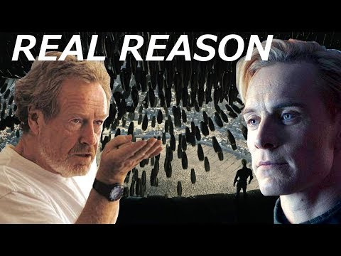 Ridley Scott Tells The REAL REASON Why David Killed Engineers    Alien Covenant