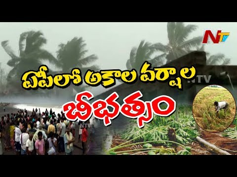 Farmers Facing Problems With Sudden Rains In AP || Two Fishermen Missing In Vizianagaram || NTV