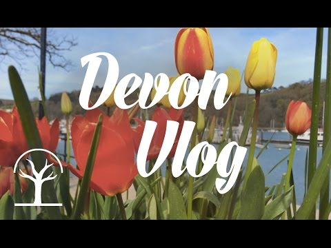 Drawing and Exploring in Devon | VLOG