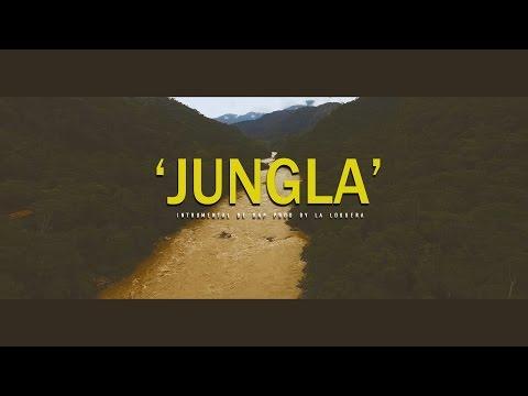 JUNGLA - INSTRUMENTAL DE RAP USO LIBRE (PROD BY LA LOQUERA 2017)