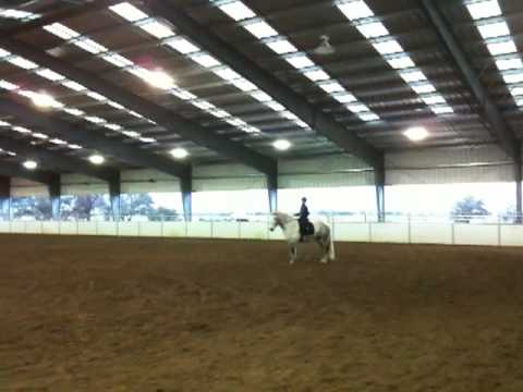 Kristen Does Dressage - Part 3 Video