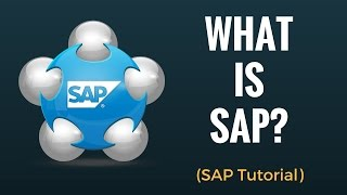 What is SAP? Why do we need ERP? Beginner Tutorial