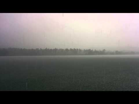 Raining In Front Of Parassinikadavu Muthappan Temple Kannur video