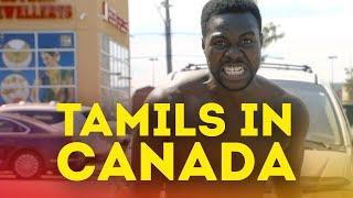 Download Lagu TAMILS IN CANADA [This is America Parody] - Music Video Gratis STAFABAND
