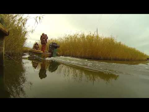 толстолобик ловля краснодарский край