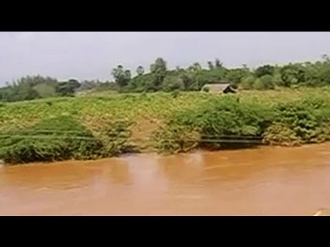 Andhra Pradesh rain: Farmers worst hit, crops in 5 lakh hectare damaged