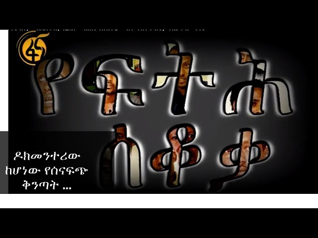 Ethiopia: Yefeteh Sekoka Documentary Shows Little Compared With Other Human Right Violations