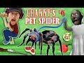 GRANNY's PET SPIDER + SECRET ROOMS W/ Annoying Baldi's Basics!! (FGTEEV Gameplay)