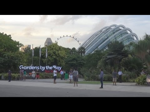 D4 Singapore's Garden's By The Bay August, 2016