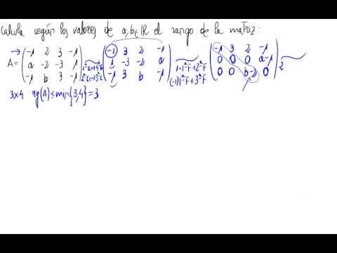 Rango de una matriz (parámetros)