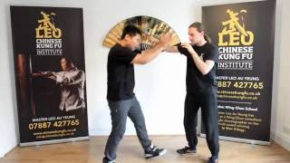 The Internal Path of Wing Chun (Tan Sau) by With Leo and With Siukee - Episode 6