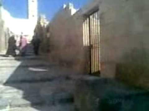Halep Kalesinde Gezinti /// Tour in Aleppo Castle