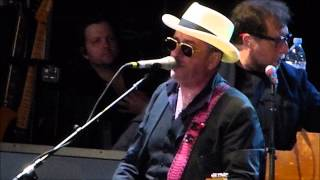 Watch Elvis Costello Flutter  Wow video