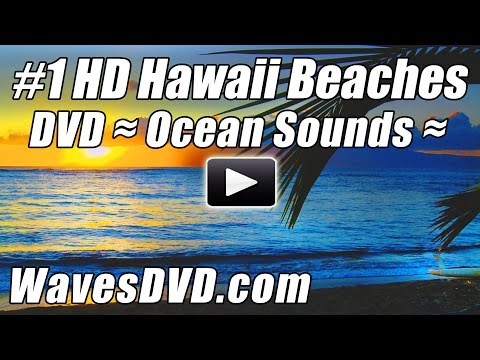 #1 BEACH Videos Best Ocean Video HD HAWAII BEACHES Relaxing WAVES DVD Beach Hour