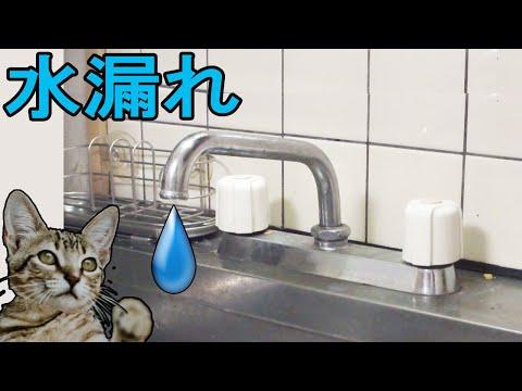 水栓の水漏れ修理 コマパッキン(ケレップ)交換方法(水道蛇口)