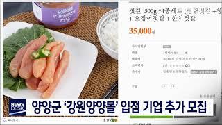 양양군 '강원양양몰' 입점 기업 추가 모집
