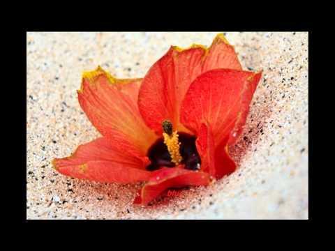 Anuragini Itha En Karalil Virinja Pookkal....... video