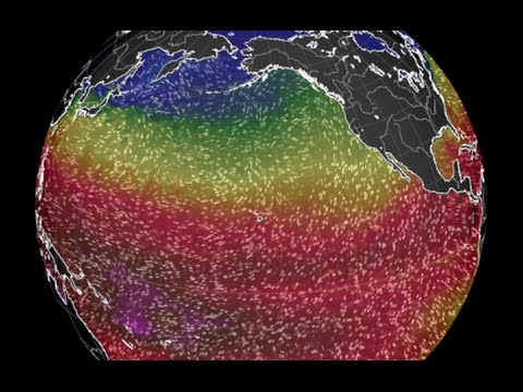 Major Storm Alerts, Space Weather | S0 News February 16, 2015