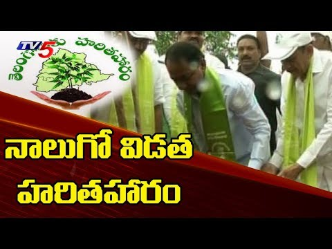 Telangana CM KCR To Launch 4th Phase Of Haritha Haram Today In Gajwel | TV5 News