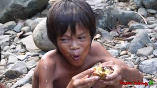 Primitive Technology - Eating delicious - Cacth and cooking big crab