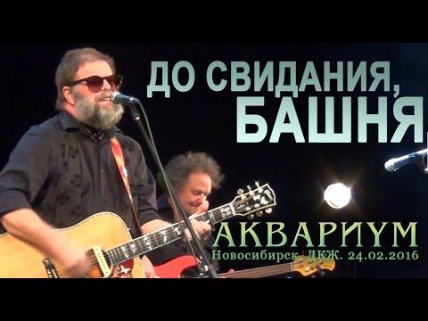 Борис Гребенщиков - Башня