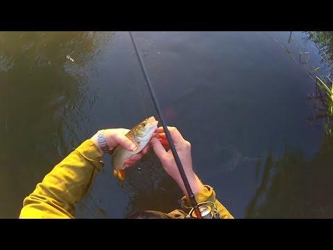 рыбалка на реке нерская видео