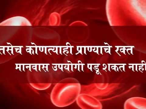 Mega Blood Donation Camp 2014 - Sadguru Shri Aniruddha Upasana...