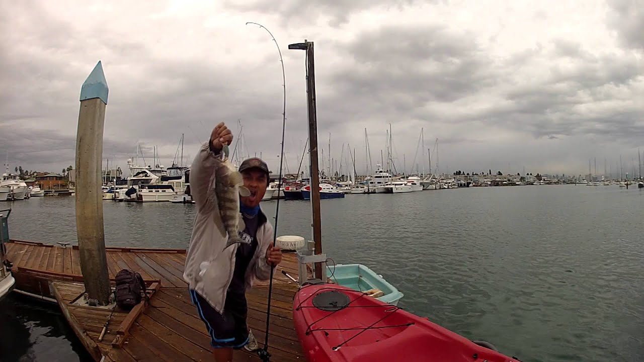 Crankbait fishing at the point loma sportfishing boat for Point loma sport fishing