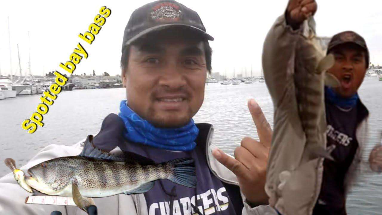 Crankbait fishing at the point loma sportfishing boat for Point loma fishing