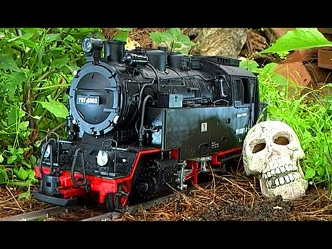 G Scale Train Newqida LGB 6 Month Chernobyl Urban Decay Effects