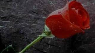 Marco Antonio Solis Video - MARCO ANTONIO SOLIS - Se va muriendo mi alma