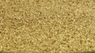Clean Out #8 | Bering Sea Gold