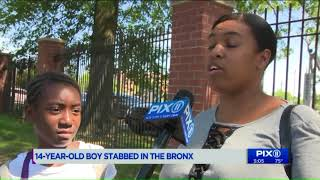 Gang responsible for vicious machete slaying allegedly attacked second teen in the Bronx