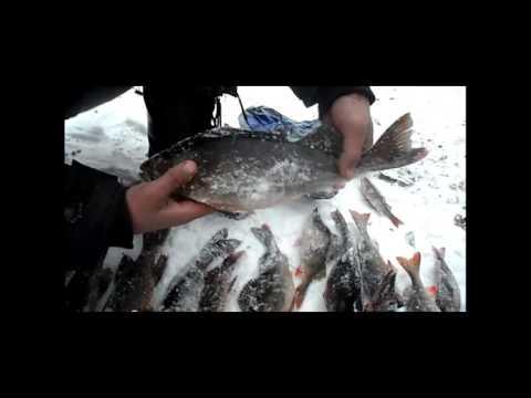 рыбалка от иванникова