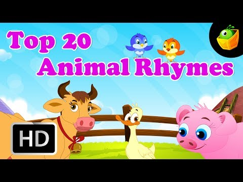 Top 20 Animal Compiled English Rhymes - Combination of Cartoon/Animated English Rhymes For Kids