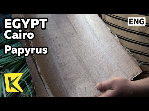 【K】Egypt Travel-Cairo[이집트 여행-카이로]고대 종이 파피루스 제작/Papyrus/Nile Delta/Producing/Paper