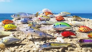 Fishing for Bass with Electronic Lures! - Clear Lake, California (Livingston Lures) GIVEAWAY