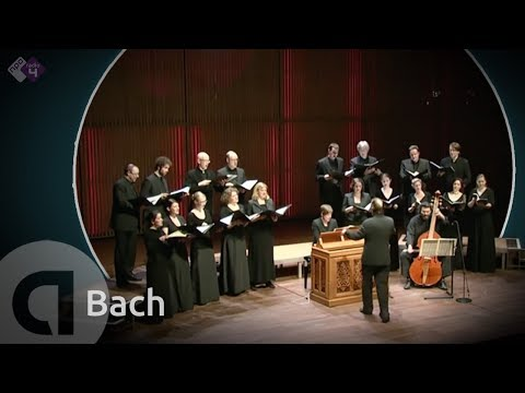 J.S. Bach: Motet BWV 225 'Singet dem Herrn' - Vocalconsort Berlin