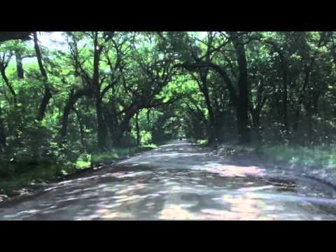 A drive on Botany Bay Road Edisto Island, SC