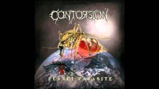 Contorsion - New World Order