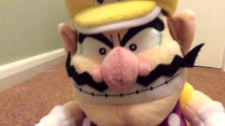 The Wario Brother