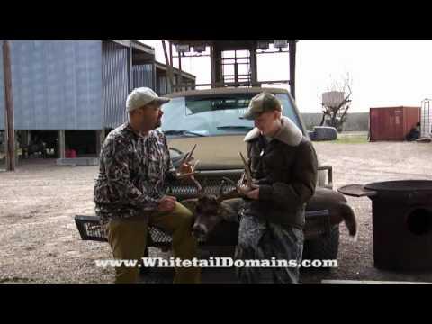 , Good Genetics, East Texas, Montgomery County, 2011, Whitetail Deer