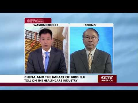 Deming Huo Discusses How the Bird Flu is Affecting China