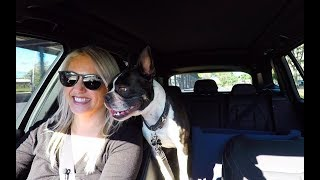 Juliet drives the BMW X3 with Roscoe