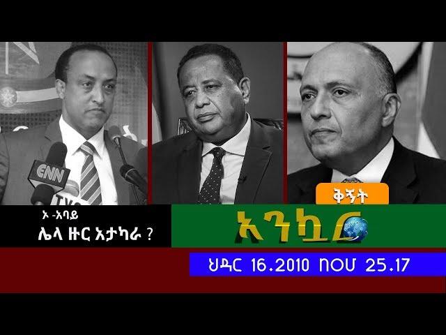 EthioTube Ankuar : Ethiopian Daily News Digest (Al Amoudi Special)