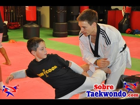 Team Cook Taekwondo Seminar in Miami  Techniques Image 1