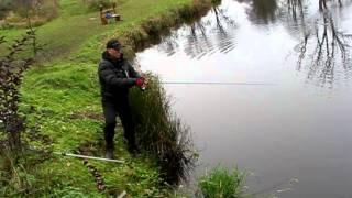 рыбалка на тимирязевских прудах видео
