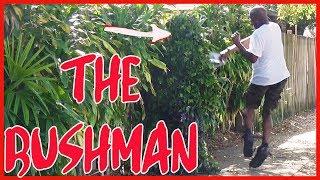 FUNNY - BUSHMAN - SCARE PRANK - 4k Video - 15 minutes long
