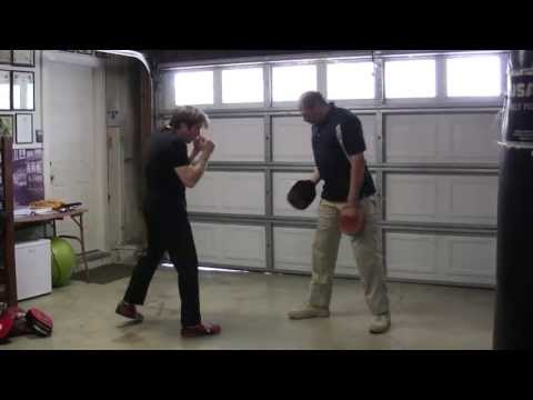 Private Lesson Footage - Intro to Focus Mitt Training (Clip) Image 1